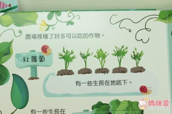 小寶貝知道每天吃的蔬菜是怎樣才能栽培出來的嗎?快打開臺灣麥克動動書